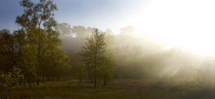 morning-on-the-roper